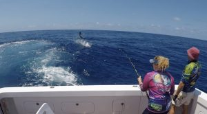 Billfish Babes Marlin Fishing Marlene Hicks