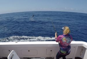 Photos Billfish Babes Marlene Hicks Topnotch Game Fishing